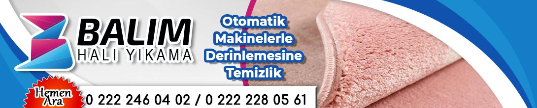 Balım Halı Yıkama Eskişehir